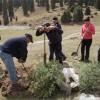 При поддержке компании «Кумтор» школьники высадили в горах хвойные деревья.