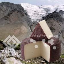 Животноводов Иссык-Кульской области научат производить сыр