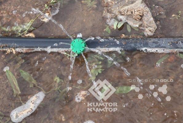 drip_irrigation1