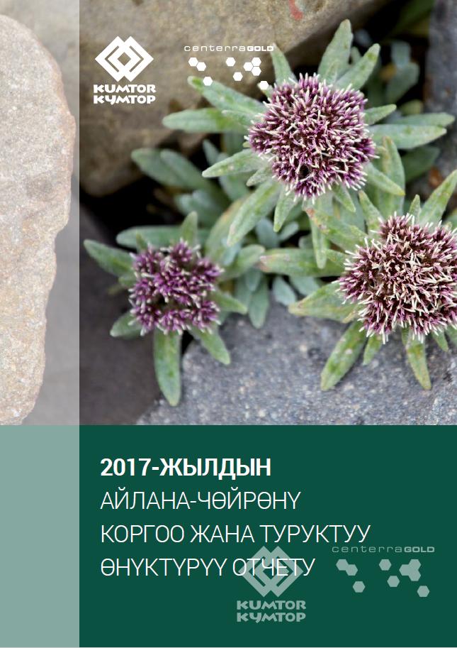 2017-жылга карата Айлана-чөйрөнү коргоо жана туруктуу өнүктүрүү боюнча отчет